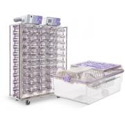 NexGen IVC 900 for mice