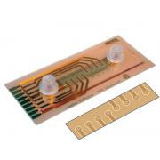 ECIS 1. kanāla plūsmas masīvs µ-Slide ar PC 8x10E (1F8x10E)